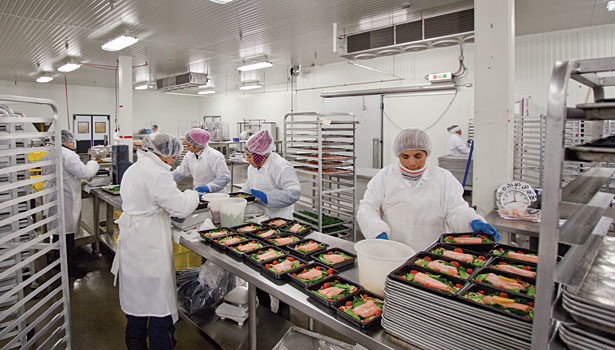 B roberts foods production line