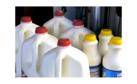 CAS DataLoggers milk temperature recording
