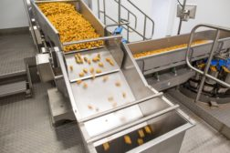 tna Whitby Seafoods conveyor