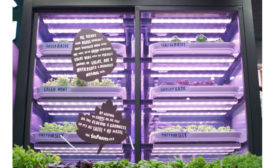Marks & Spenser infarm indoor farming