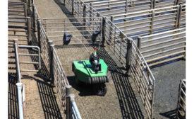 Cargill Cattle Driver Robot