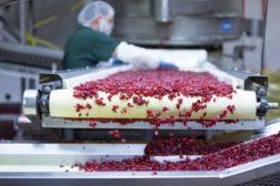 Graceland Fruit Wisconsin Expansion