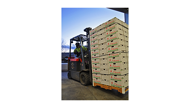 Allan Brothers Fruit export