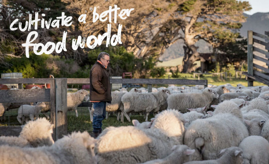 Flinders + Co becomes first carbon neutral meat supplier