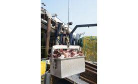 Pacific Seafood Warrenton plant