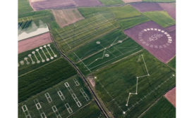 Yara IBM digital farming
