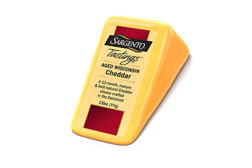 Sargento cheese tastings feature