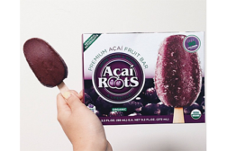 Acai Roots frozen fruit bars