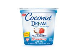 Coconut Dream yogurt