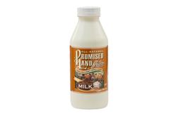 Promised Land Salted Caramel latte