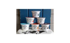 Clover Greek yogurt