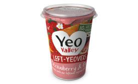 LeftYeovers frozen yogurt