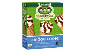Three Twins sundae cone