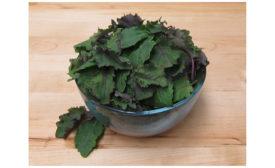 Freshway Foods baby kale
