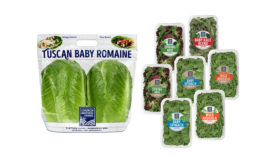 Church Brothers Farms Tuscan Baby Romaine