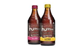 Humm Kombucha Ginger Juniper Raspberry Hops