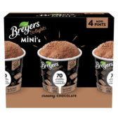 Breyers delights Minis