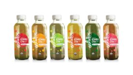 Evolution Fresh Organic Kombucha_Full Line