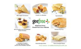 GeeFree FoodService Offering