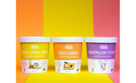 NadaMoo new flavors 2019