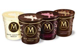 Unilever MAGNUM Tubs