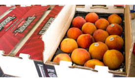 Fresh Peaches Limited Time Sales Sysco Summeripe