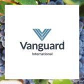 Vanguard International Logo