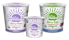 Dairy Free Yogurt Oatmilk Halsa National Grocers Vitamin Cottage