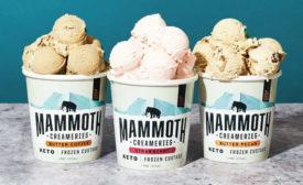 Keto Frozen Custard Butter Coffee Strawberry Butter Pecan Mammoth Creameries