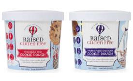 Vegan Cookie Dough Chocolate Chip Fudge Plant Based Raised Gluten Free