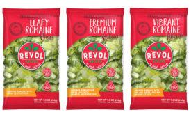 Greenhouse Lettuce Chopped Romaine Revol Greens