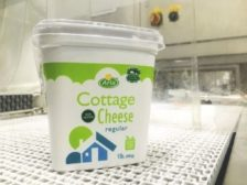 Arla Cottage Cheese
