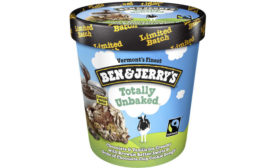 Totally Unbaked Limited Batch Chocolate Chip Cookie Brownie Swirl Ice Cream Ben Jerry