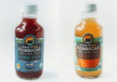 Alcohol Free Kombucha Aqua ViTea Blueberry Social Peach Out