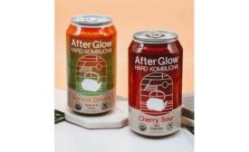 Hard Kombucha Aqua ViTea Apricot Dream Cherry Sour Cans Fermented