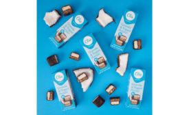 Greek Yogurt Coconut Chocolate Covered Parfait Snack Bars Clio