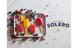 Solero Frozen Fruit Bars Crave Chipwich Dessert