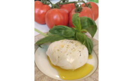 Burrata Cheese Animal Free Dairy Remilk