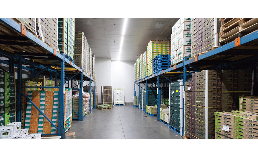 G u0026 G Oppenheimer Cold Storage  sc 1 st  Refrigerated and Frozen Food & Sustainable Lighting Solutions for Cold Food Industry | 2016-01-06 ...