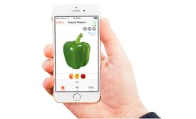 Handshake ecommerce app