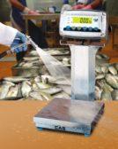 Alliance Scale CAS Enduro Extreme Washdown Checkweigher
