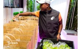 Freight Farms Grown farming
