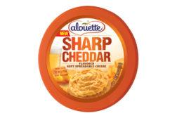 Alouette Cheddar Spreadable cheese
