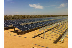 REC Solar Vignolo Farms