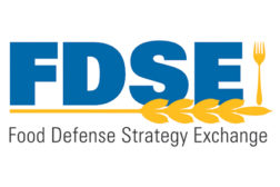 FDSE logo