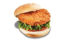 Broaster spicy chicken fillet