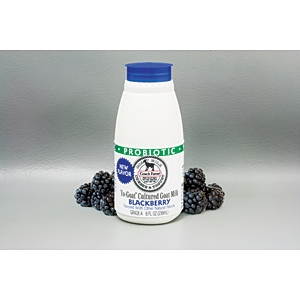 Coach Farm blackberry yogurt