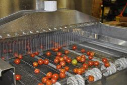 Smart Fog food safety tech