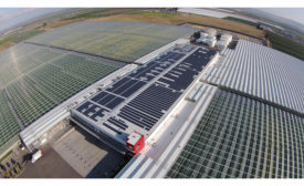 REC Solar Windset Farms