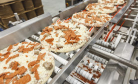 Palermos line of frozen pizzas